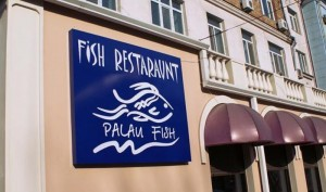 PALAU FISH3