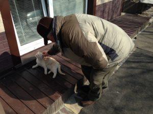 ビクトルさんの猫屋敷11